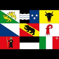 Kantonvlaggen Zwitserland 20x30cm