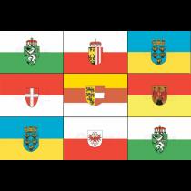 Deelstaatvlaggen Oostenrijk 20x30cm